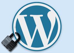 {WordPress WP} Security