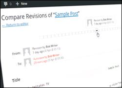 WordPress Plugins For Managing WordPress Post Revisions