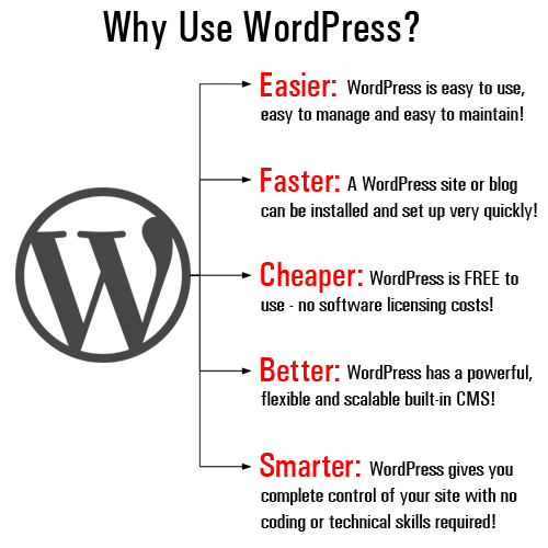 Discover WordPress - The easiest, fastest, cheapest, better, and smarter tool for growing your digital presence!