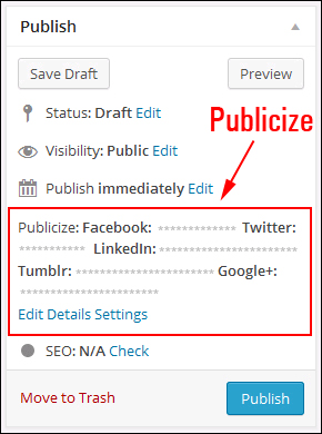 Publicize account details appear in your publishing box.