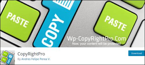 WP CopyRightPro