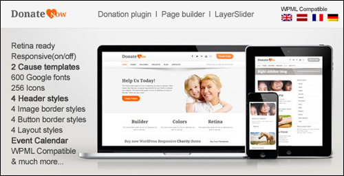 WordPress Theme - Donate Now