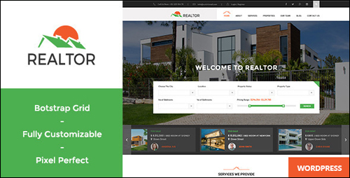 WordPress Theme - Realtor