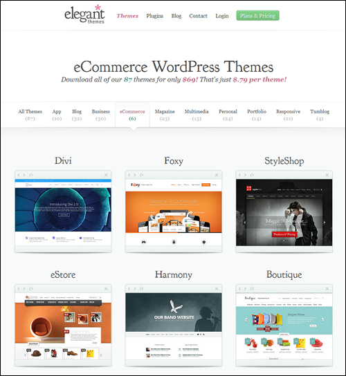 Elegant e-Commerce WordPress Themes