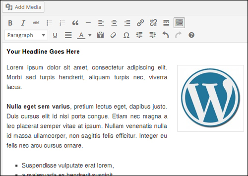 WordPress Visual Content Editor