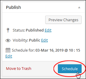 Publish Section - Schedule Button