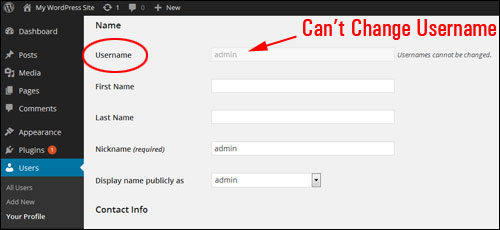Changing Your WordPress Username From Admin To A Different User Name