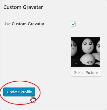 Use Custom Gravatar