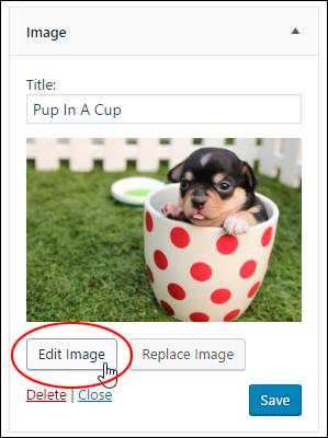 Image Widget - Edit Image