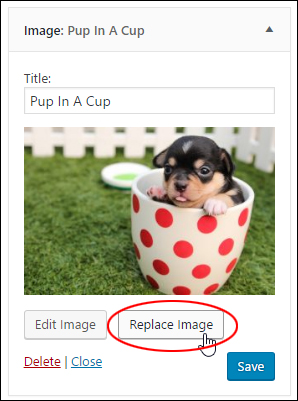 Image Widget - Replace image