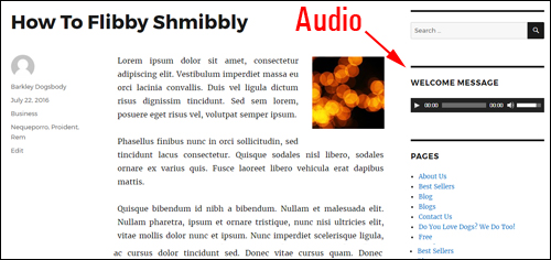 Add an audio to your sidebar with the WordPress audio widget