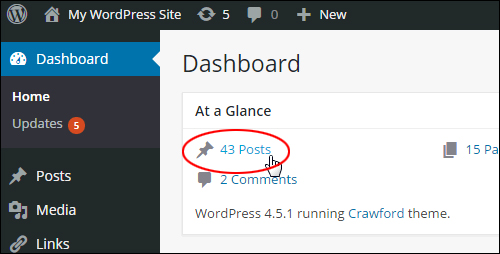 WordPress Dashboard > 'At a Glance' > 'Posts'