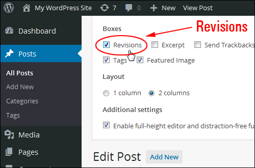 Screen Options tab - Revisions
