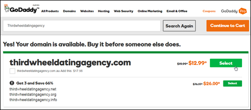 GoDaddy Domain Registration Screen