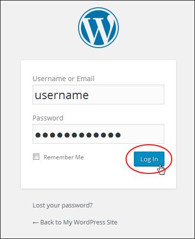 Log into WordPress