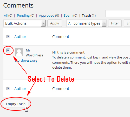 WordPress Comments screen - Empty Trash