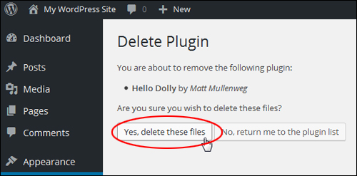 Delete Plugin files
