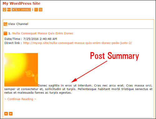 Feedreader displays post summary only