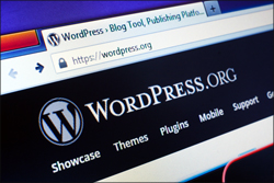 How To Update Your WordPress Installation In The WordPress Dashboard