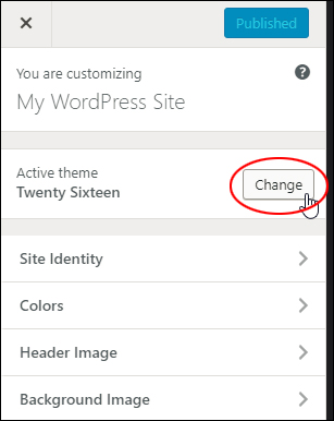 WordPress Theme Customizer menu - Active theme section