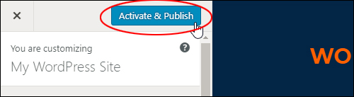 Click 'Activate & Publish' to change themes
