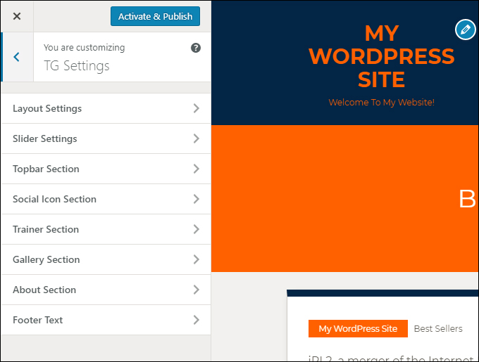 WordPress Theme Customizer menu items add new theme options and settings