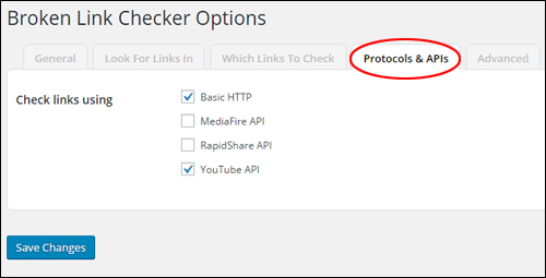 Broken Link Checker Options > 'Protocols & APIs' Settings