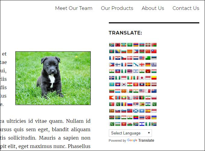 Google Language Translator sidebar widget