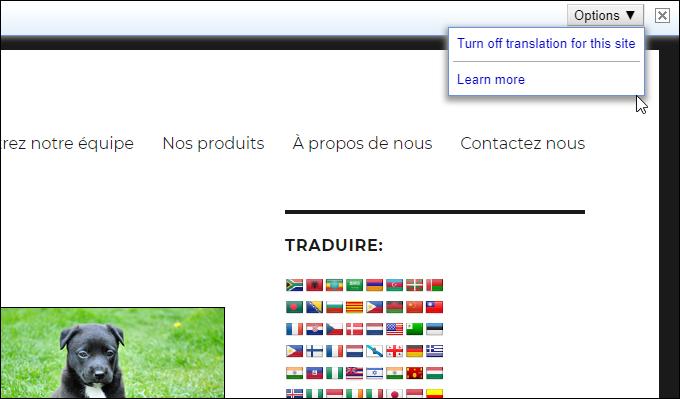 Google Translator toolbar options