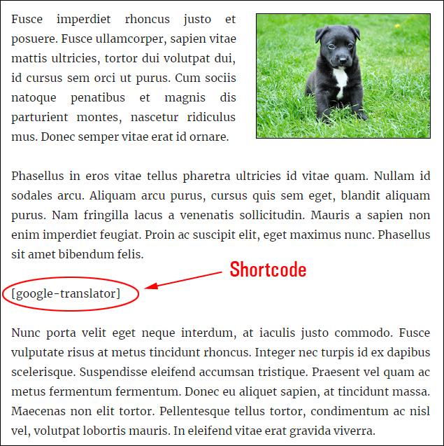 Google Translator shortcode
