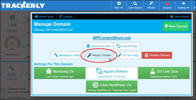 Repair Domain