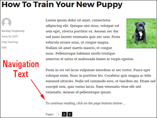 Page navigation text