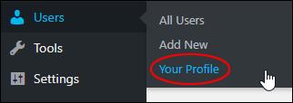 Users > Your Profile menu