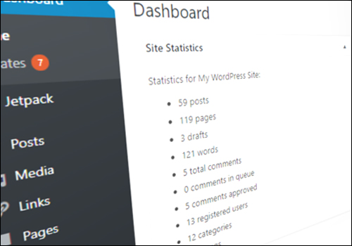How To Display Your WordPress Blog Stats To Visitors