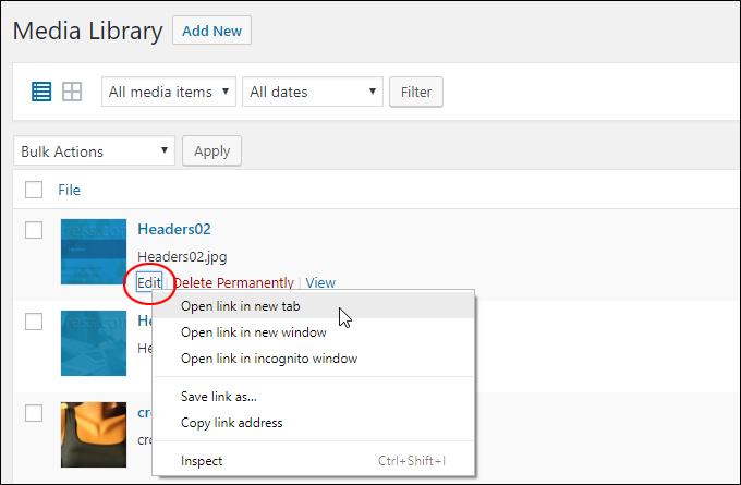 Media Library - Edit