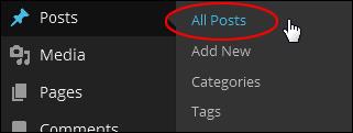 WordPress Posts Menu - Add Post
