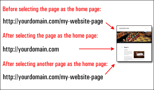 How To Show Any WordPress Page Of Your Choice As Your Site's Home Page