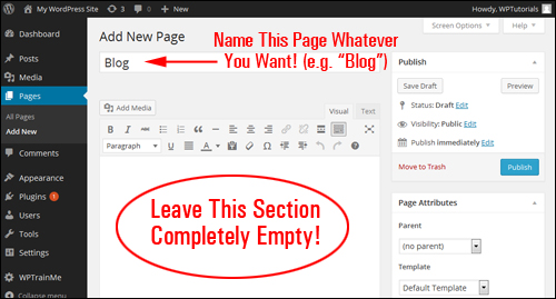 How To Create A Blog Page To Display Your Latest Blog Post Entries