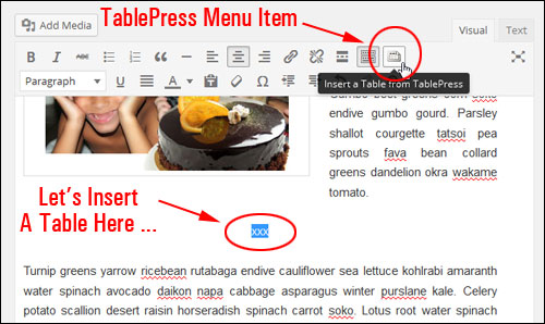 How To Add Tables In Pages And Posts With WordPress