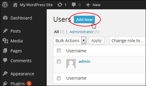 Changing Your Admin User Name In WordPress
