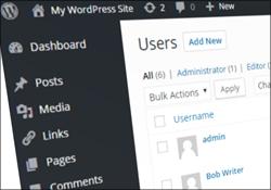 {{WordPress|WP} {Tutorial|For Beginners}|{Learn|Learn To Use|Learn How To Use} {WordPress|WP}}