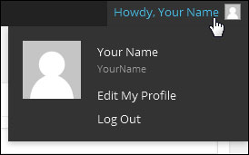 How To Change Your WordPress User Details And Personal Options