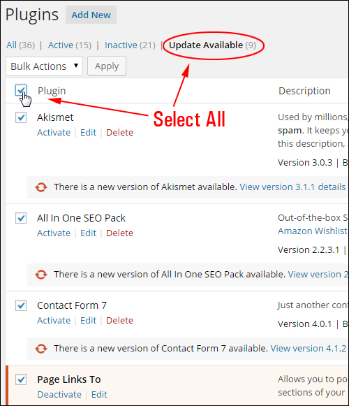 Updating And Deleting Plugins Safely In Your WP Admin Dashboard