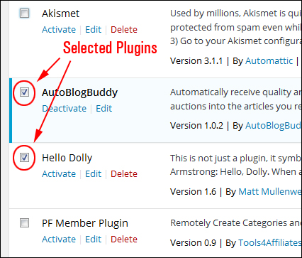 Upgrading And Deleting Plugins Safely Inside Your WP Admin Dashboard