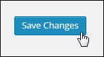 WordPress button save changes