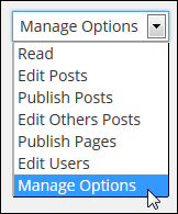 plugin to-do lists - User Permissions Settings Tab - View To Do-List drop-down menu