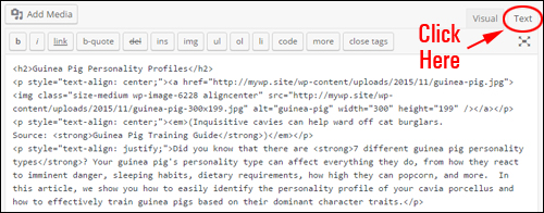 WP Text [HTML] Editor Mode