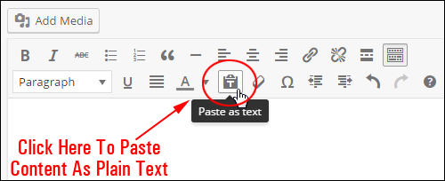 Paste as text menu button