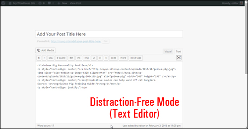 Distraction-Free Writing Mode - WordPress Text Editor