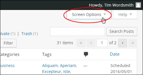 WordPress Posts Table - 'Screen Options'